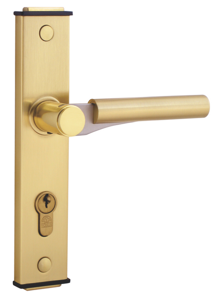 Bonus Compact 555 Mortise Handle Complete Set with Cylinder