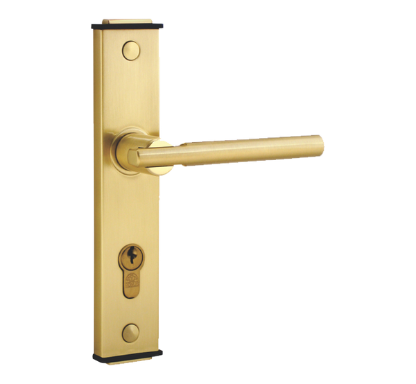 Bonus 333 Mortise Handle Complete Set with Lever Lock