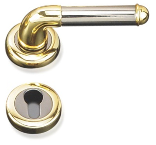 Indobrass Prince Rose Mortise Handle Complete Set