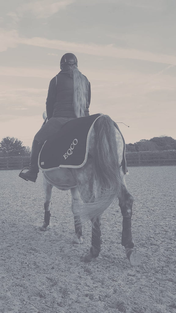 Our First Guest Blogger Post - Gee From Wonderhorse Dressage