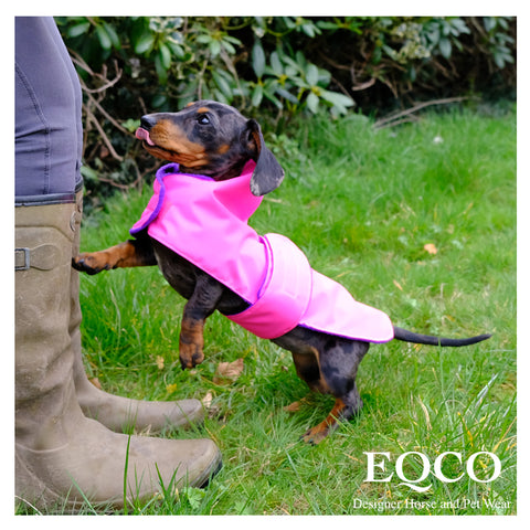 Eqco Dog Coat Dachshund Waterproof Neon Hi Viz