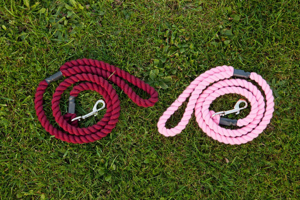 Eqco rope dog leads in burgundy and pink