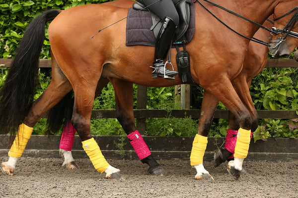 Pink And Yellow Glitter Horse Bandages
