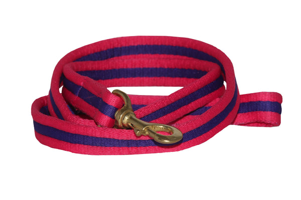 Eqco pink and purple dog lead with brass clip