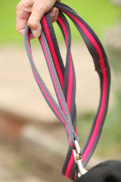 Eqco dog lead with extra handles in pink and grey