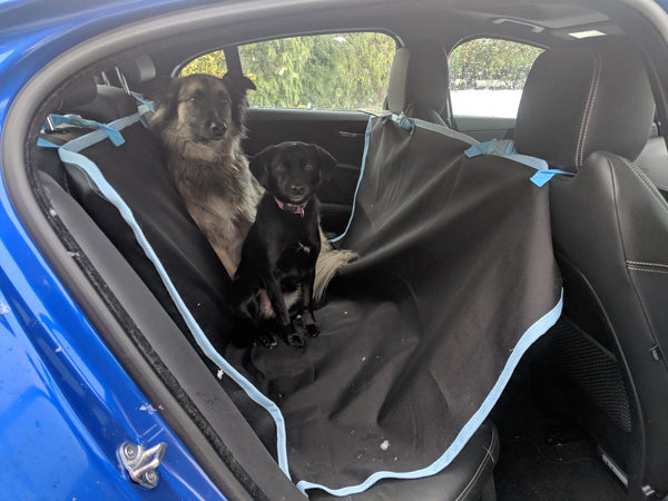 Eqco Customisable Waterproof Car Seat Cover