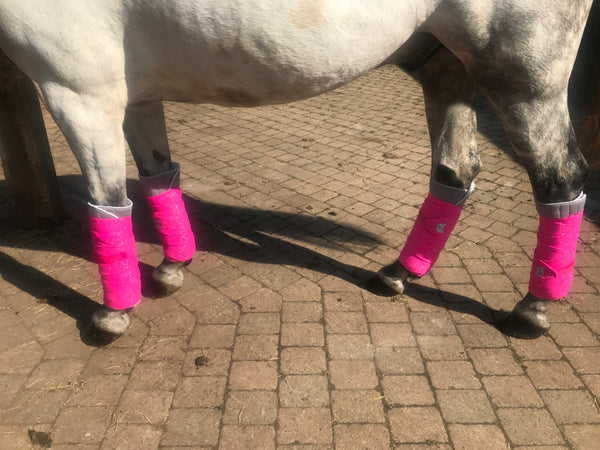 Grey Eqco Bandage Pads With Neon Pink Bandages
