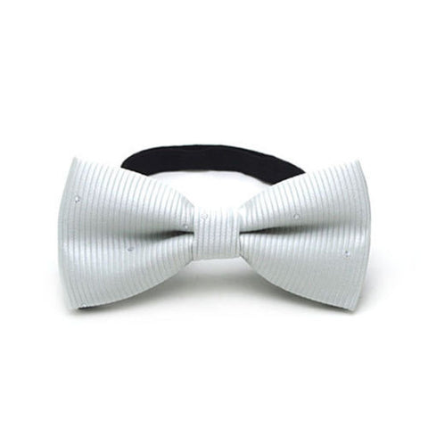 Bow Tie - White and Silver