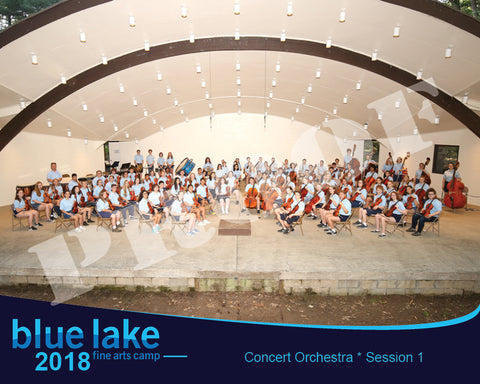 2018 - Concert Orchestra