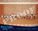 2018 - Advanced Chamber Orchestra