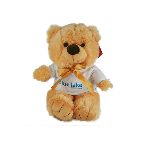 Teddy Bear with T-Shirt (12 Inch)