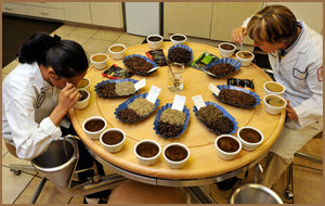 Club Coffee Master Tasters Ensuring Product Quality