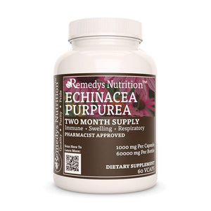 Echinacea Purpurea Supplement Remedys Nutrition
