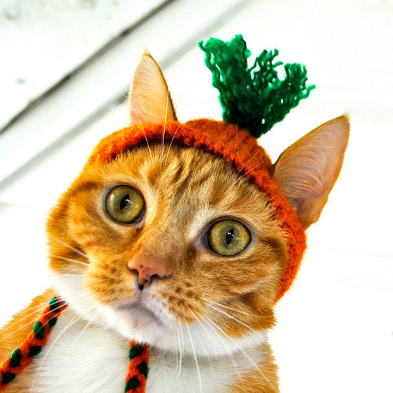 Crazy Carrot Costume for Cats - Hand Knit Cat Hat - One Cool Gift  - 1