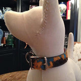 American Acid dyed School Bus colors plain dog collar