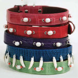 American Alligator dog collar stack embellished