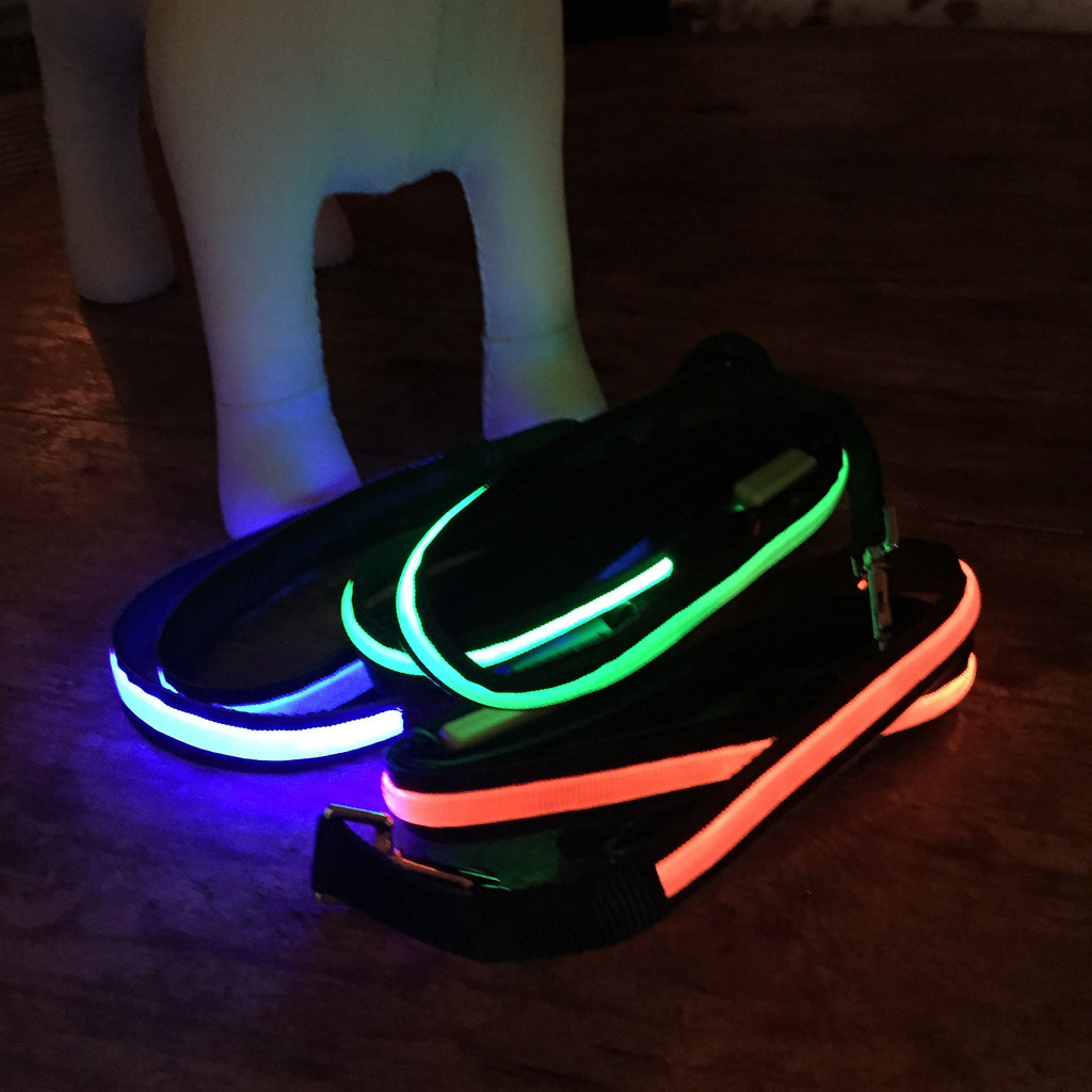 "Lumi LED illuminated 48"" leash colors Orange, Green, Blue, and Pink lighted"