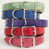 Multi color Stacks of Alligator dog collars, plain