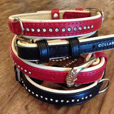 Stack of Single Brilliance dog collars