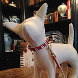 Dog manequin wearing Medium size Red collar with stars and leash