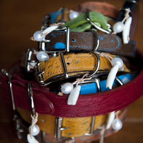 American Acid dyed multi colored dog collar stack, embellished