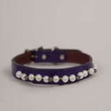 American Alligator Diamond and Pearl dog collar