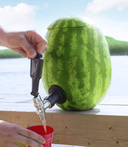 Use a Watermelon as a Drink Dispenser