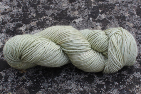 SweetGeorgia Yarns Trinity Worsted
