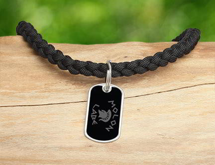 Necklace - Molon Labe (Gray)