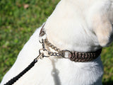 WIDE Martingale Collar