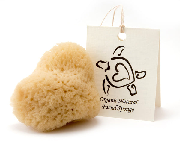 Sustainable Cosmetic Sea Sponge