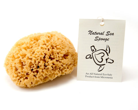 Sustainable Bath & Shower Sea Sponge