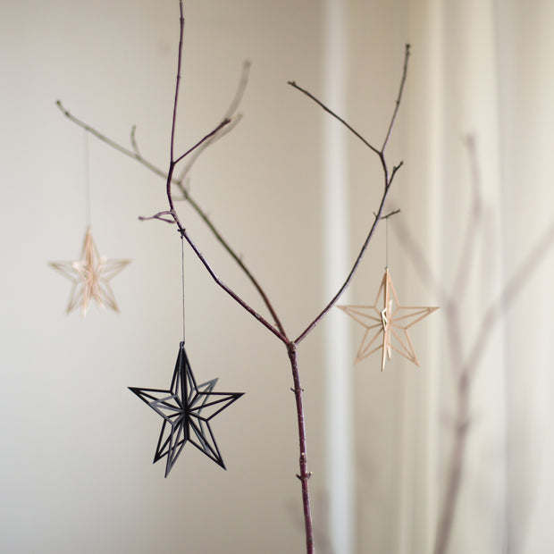 Valona Birch Star Crystal Decoration, Natural
