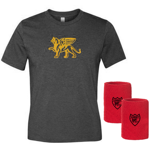 Gold Lion Kit - Boys - Loriet Activewear
