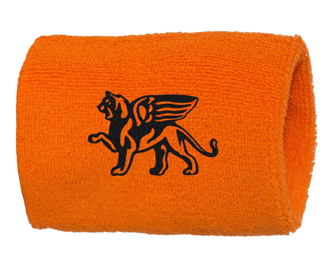 Pro Team Lion Logo Wristbands Pair - Loriet Activewear