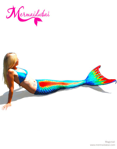 191-3-Rainbow Mermaid tail Full set size L
