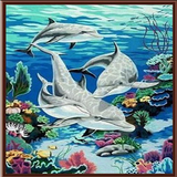 Paint By Numbers Dolphin G046
