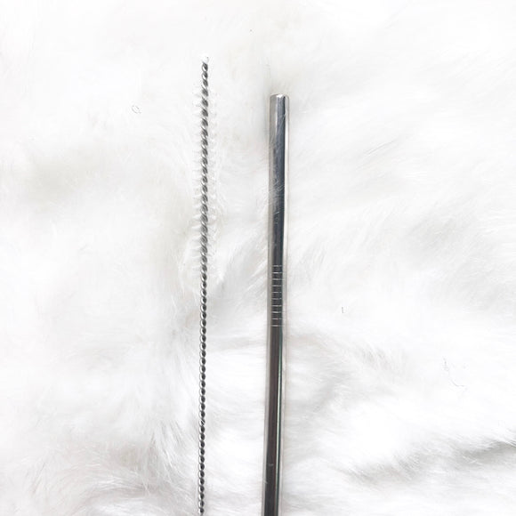 Reusable Straight Straw with cleaning brush - Silver
