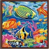 Paint By Numbers Fish G047