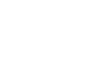 Leader Newspapers logo