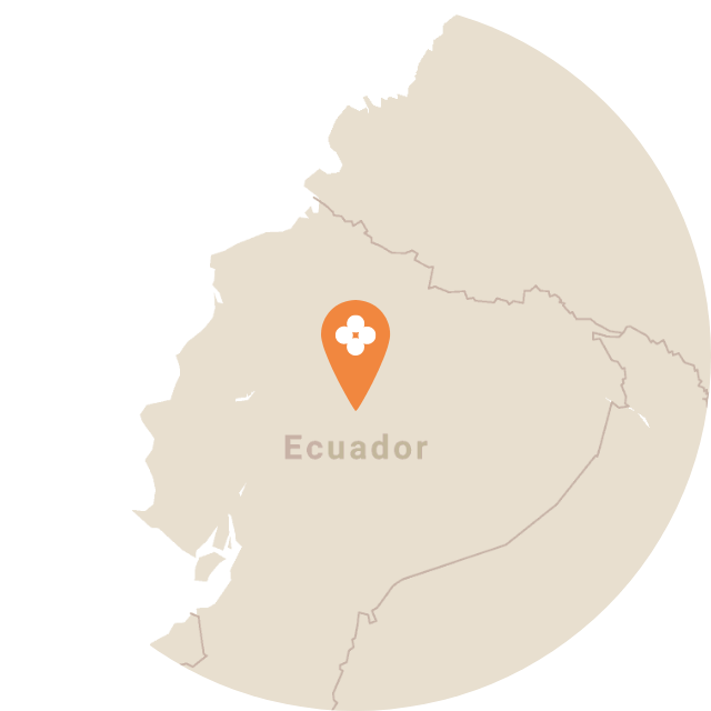 Map image of Ecuador
