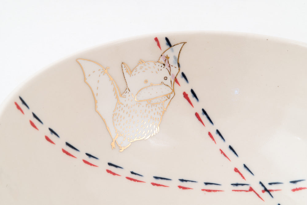 Bat, Bird, and Campfire Ramen Bowl (b-809)