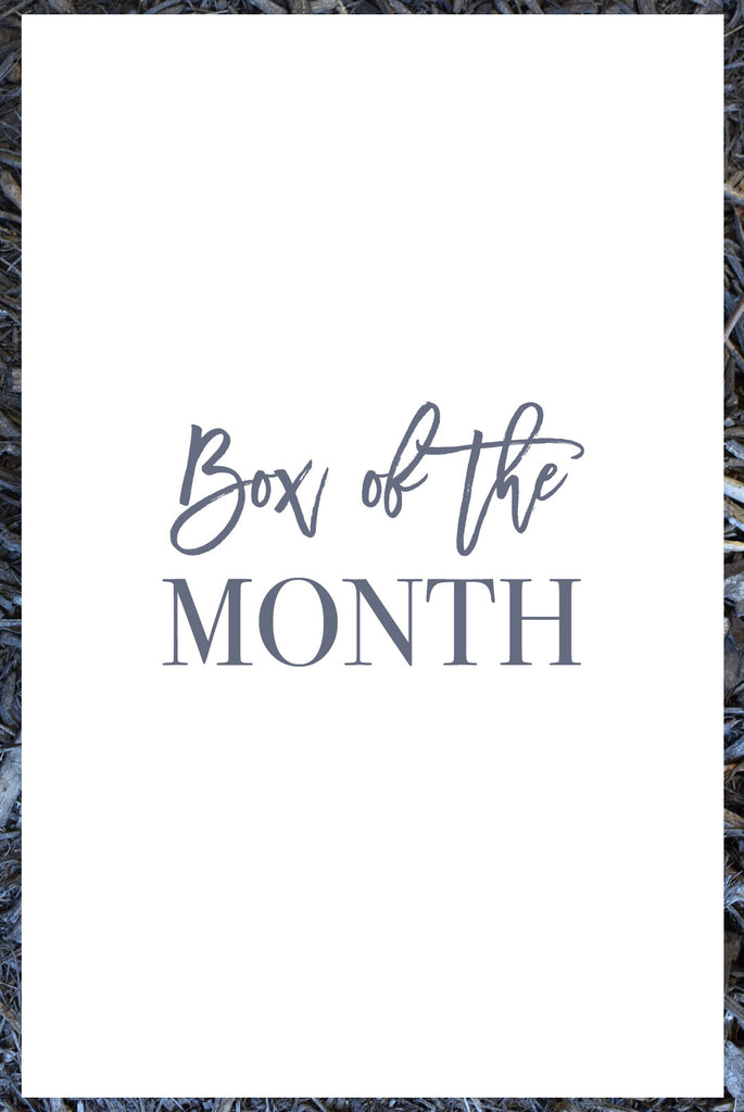 Monthly Subscription - Box of the Month