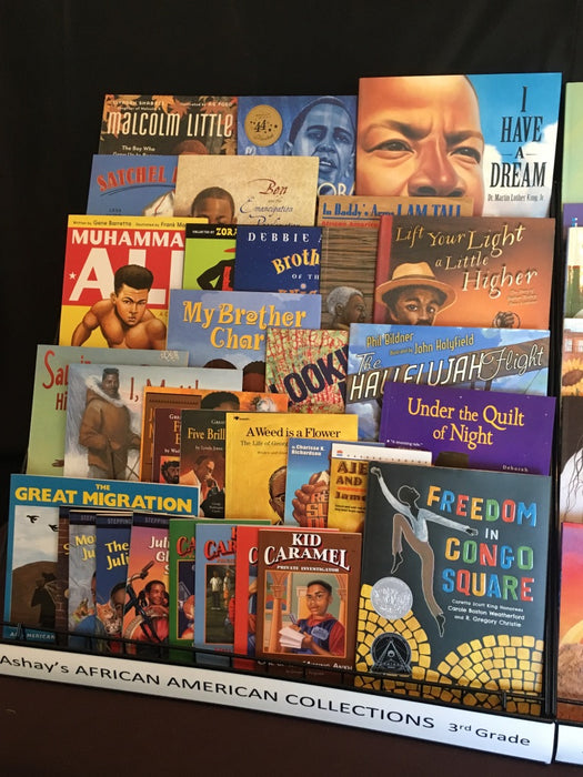 Ashay's African American Third Grade Collection 69 Books $697.50 with 10% Discount!