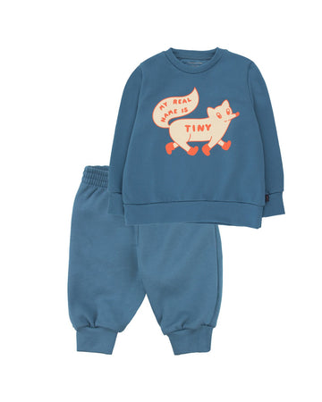 Tiny Fox Sweat Set