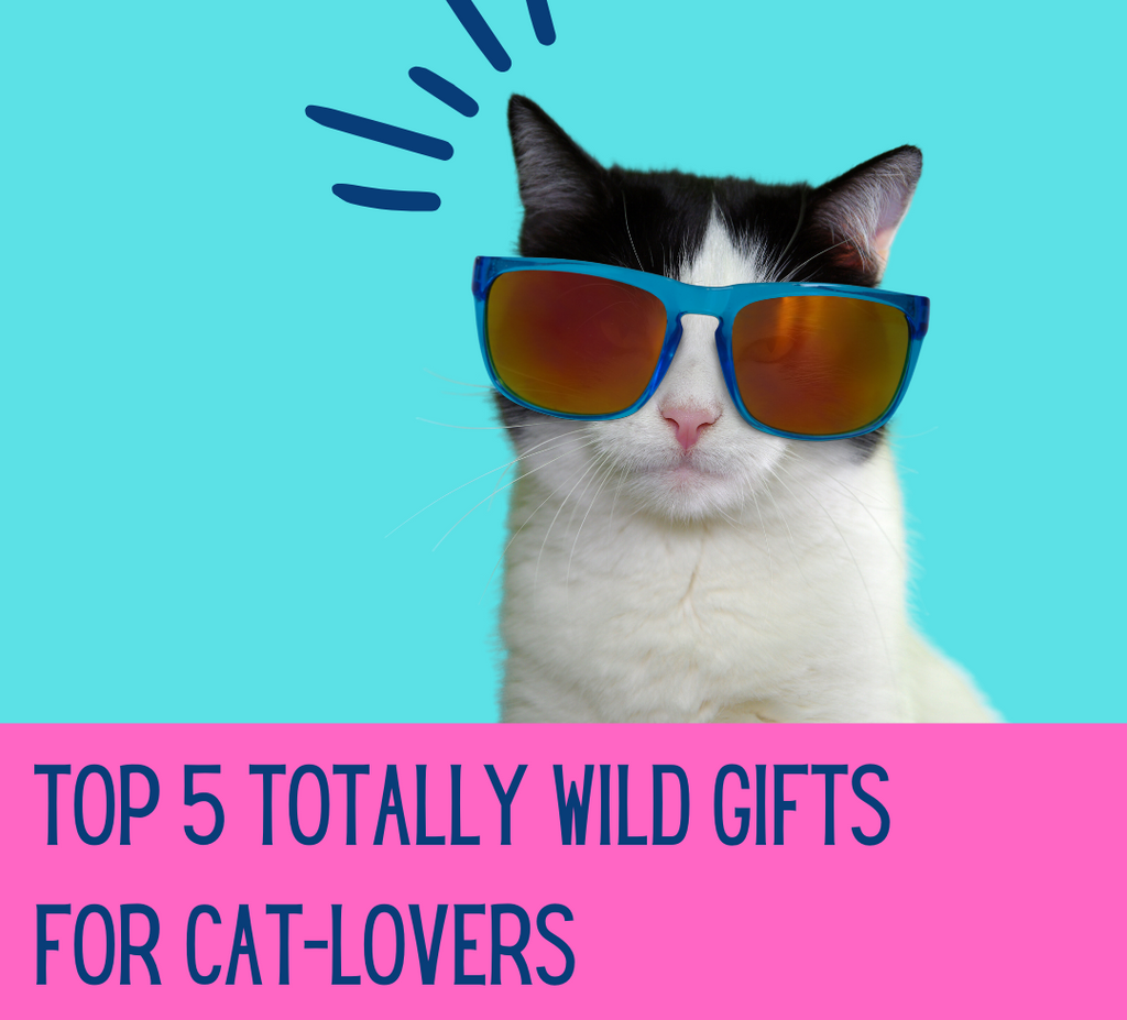 Top 5 Purrrrfect Gifts For Cat-Lovers (OMG, there's CAT WINE)