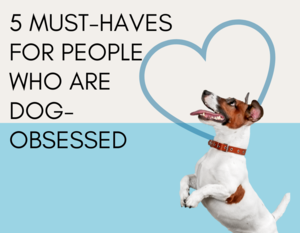 5 Must-Haves For People Who Are Dog-Obsessed