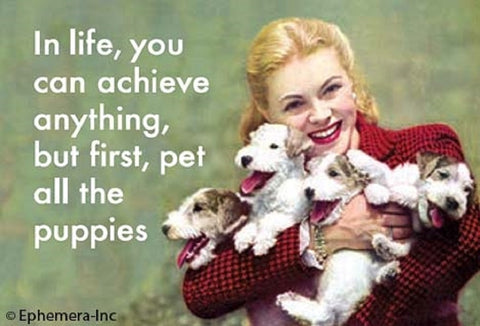 In Life, You Can Achieve Anything, But First, Pet All The Puppies Magnet