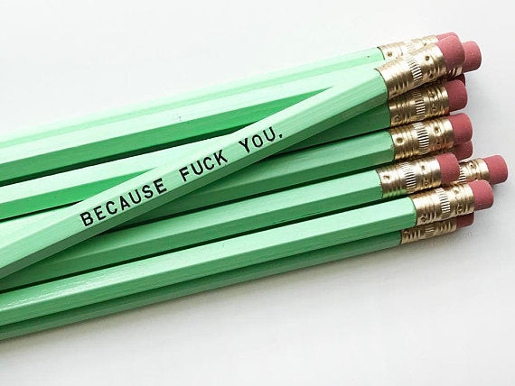 Because Fuck You Pencil Set in Mint | Set of 5 Funny Sweary Profanity Pencils