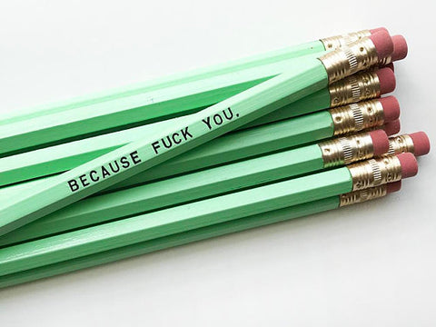 Because Fuck You Pencil Set in Mint